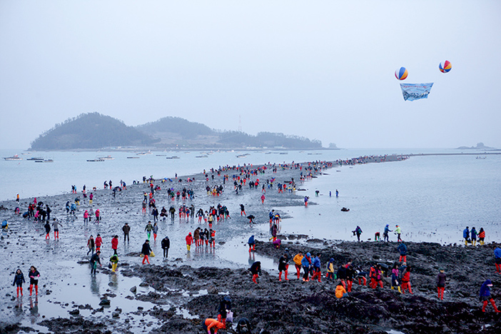 Jindo Miracle Sea Road Festival