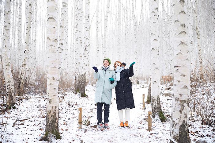 Forêt de bouleaux Wondaeri ('forêt des bouleaux qui chuchotent')