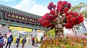 新年祈福求好运,韩国寺庙深度游