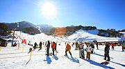 Partez au ski cet hiver ! 'Festival du Ski de Corée 2014~2015'