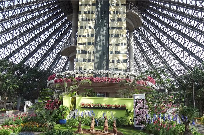 Оранжерея ботанического сада Ёмичжи (Источник: Ёмичжи)