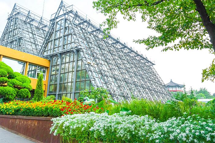 Оранжерея ботанического сада в Большом детском парке