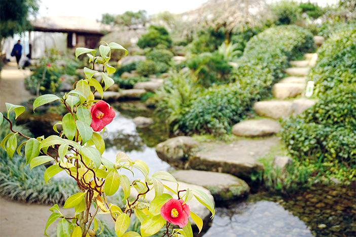 Павильон бабочек в саду Ихвавон