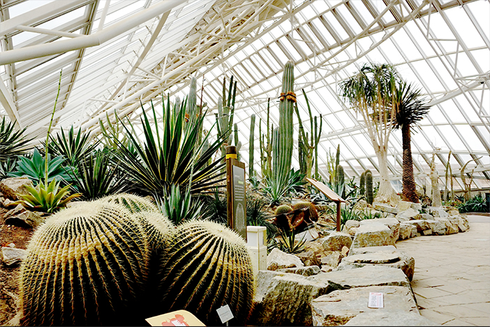 Национальный институт экологии Ecorium