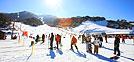 Festivales de esquí de Corea 2014-2015