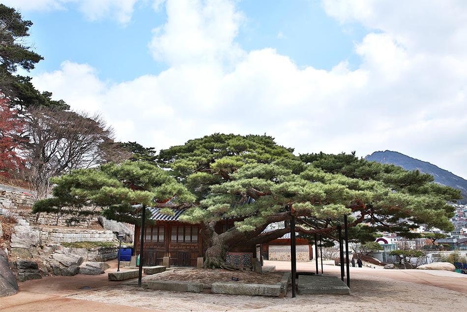 石坡亭の風景(上)とソウル美術館(下)