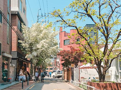 聖水洞咖啡街