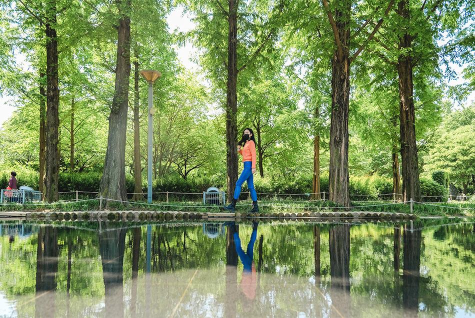 首爾林鏡湖