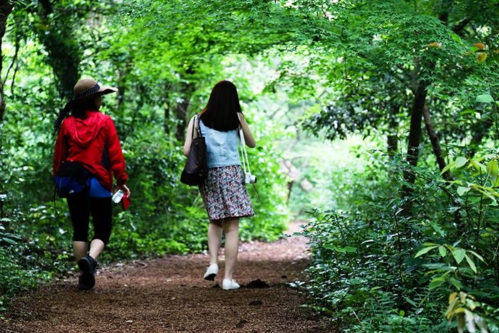 Crédits) Forêt Bijarim