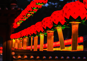 Photo : Lotus Lantern Festival at Tongdosa Temple