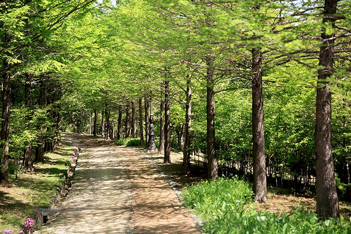 ハンバッ樹木園