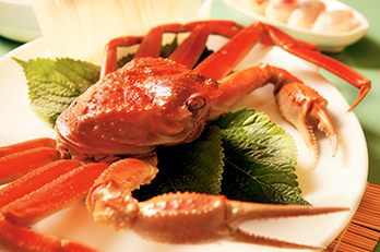 Photo: Snow crab