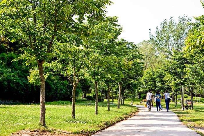 龍山家庭公園草地公園與湖水