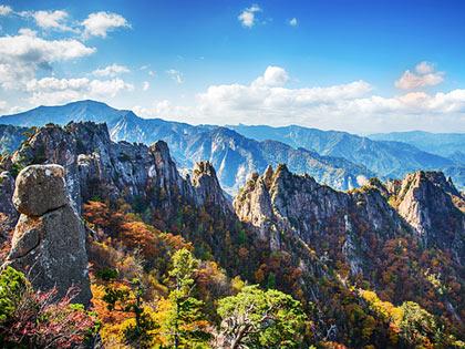 Los mejores 5 lugares para ver el follaje otoñal en Corea