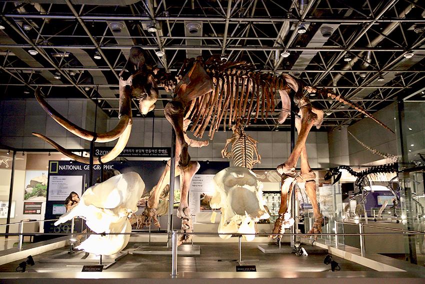 Национальный музей науки