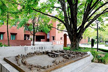 首尔大学遗址纪念碑和马罗尼埃树