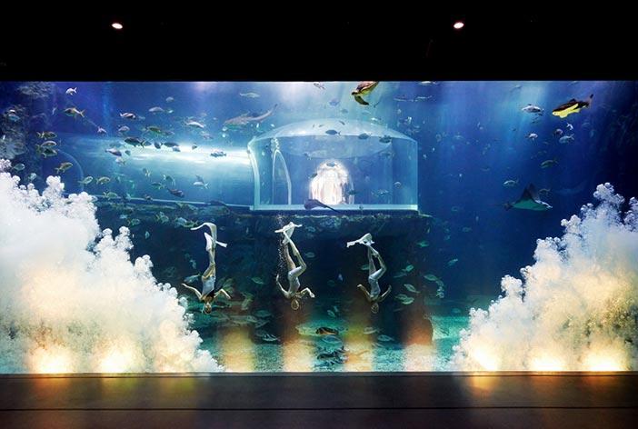 Fotos) Ausstellungsbereich im Wissenschaftlichen Museum für Meer und Fischerei