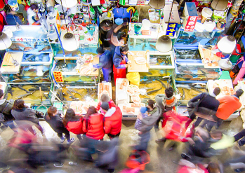 【 Photo: Noryangjin  Fisheries Wholesale Market 】