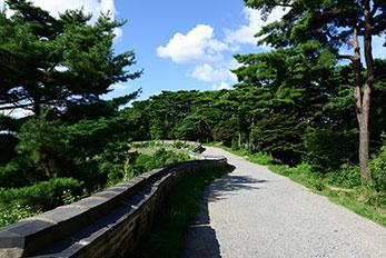 南漢山城散策路