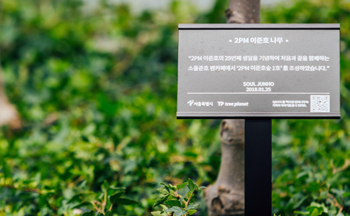Tree named after a K-POP idol