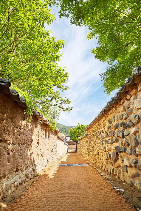 河回村トルダムキル(石塀の道)