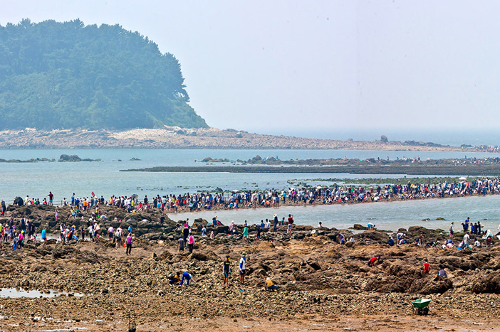 Muchangpo Beach (Credit: Boryeong-si Office)