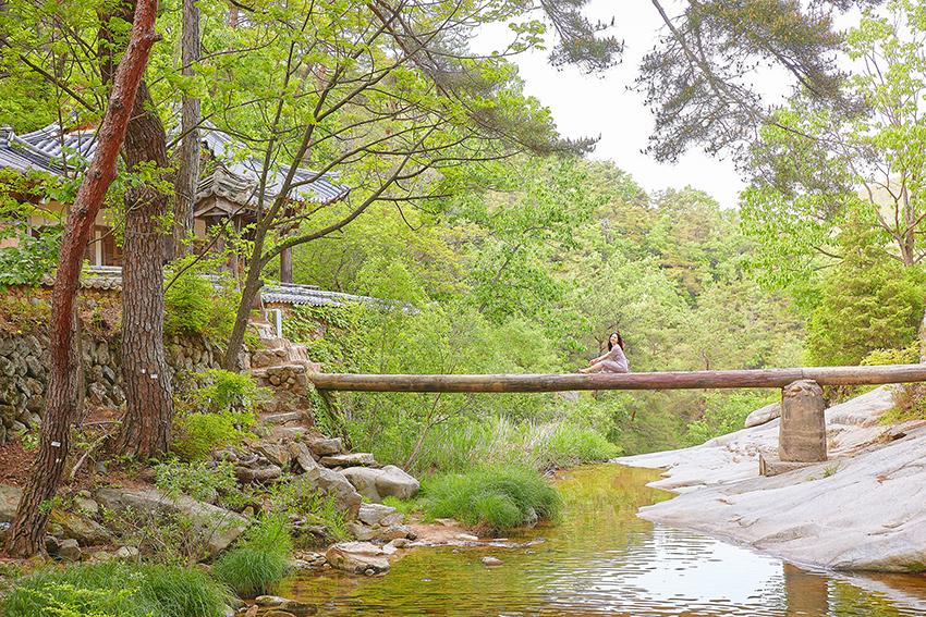 Baumstammbrücke am Pavillon Manhyujeong