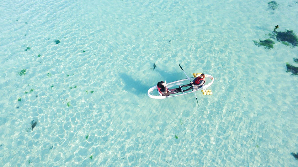 Clear bottom kayak (credit: Jeju-si)