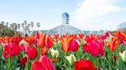 Gewächshäuser und botanische Gärten in Korea