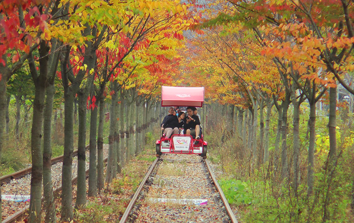 Gyeonggang Rail Bike (Credit: Gangchon Rail Park)