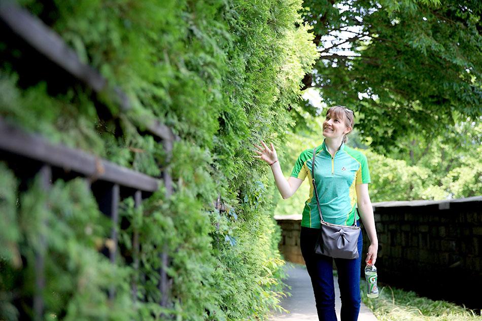 緑の中、南山区間を歩く