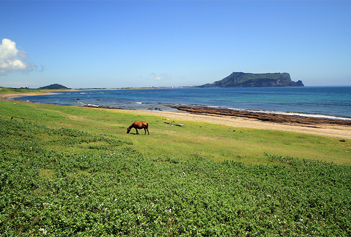 Beautiful beach at Jeju-do island