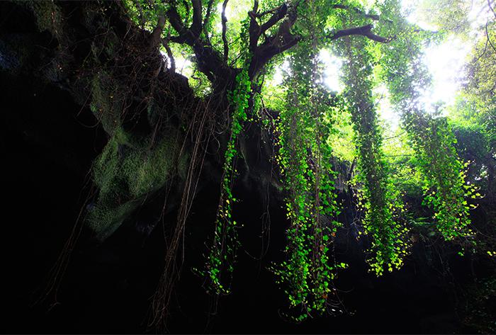 Grotte Manjanggul