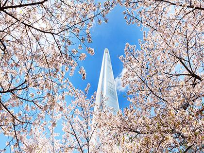 Bucket List: Best Springtime Destinations in Korea