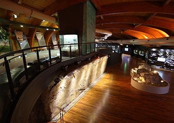 博物館の内部