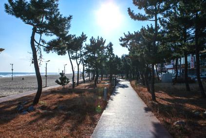 讓人忘卻夏日暑氣的韓國海水浴場10選