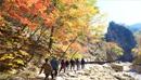 Лучшие места для осеннего отдыха в Корее: совершите горную прогулку в окружении осенней листвы!