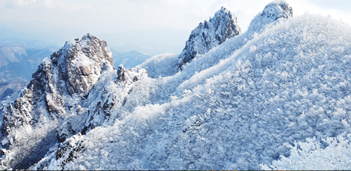 Wolchulsan Mountain