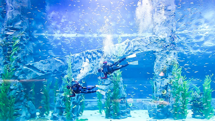 樂天世界水族館(圖片來源: 樂天世界水族館)