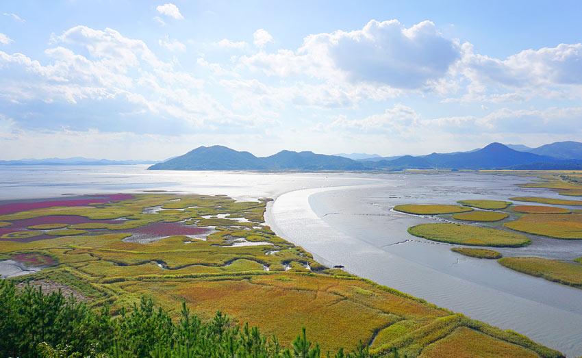 Вид с обзорной площадки Ёнсан на водно-болотные угодья залива Сунчхон