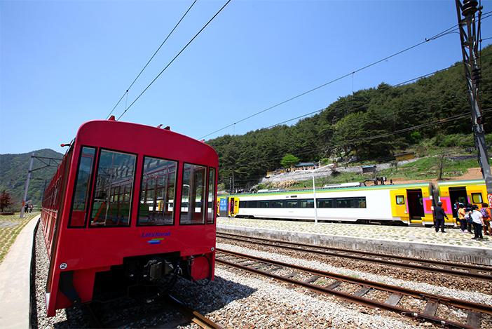 V-Train & O-Train