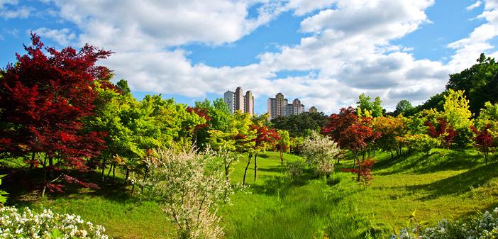 京畿道立ムルヒャンギ樹木園