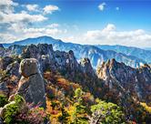 Los mejores 5 lugares para ver el follaje otoñal de Corea
