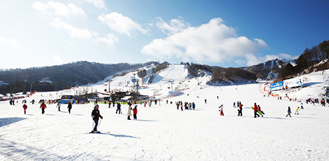 冬のゲレンデ、完全制覇!<br>ビギナーのための韓国スキー場ガイド<br>STEP BY STEP!