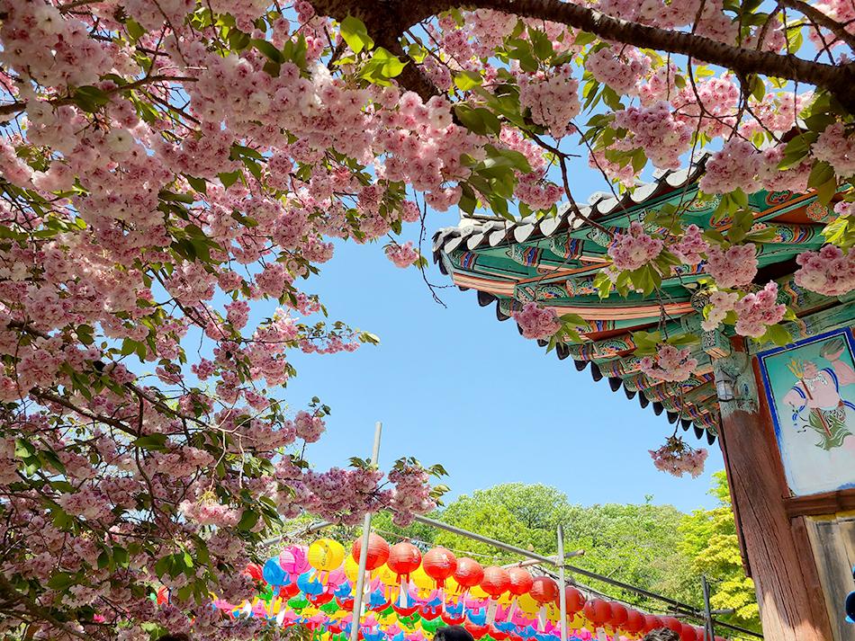 Gaesimsa Temple (Credit: Be Marie Korea)