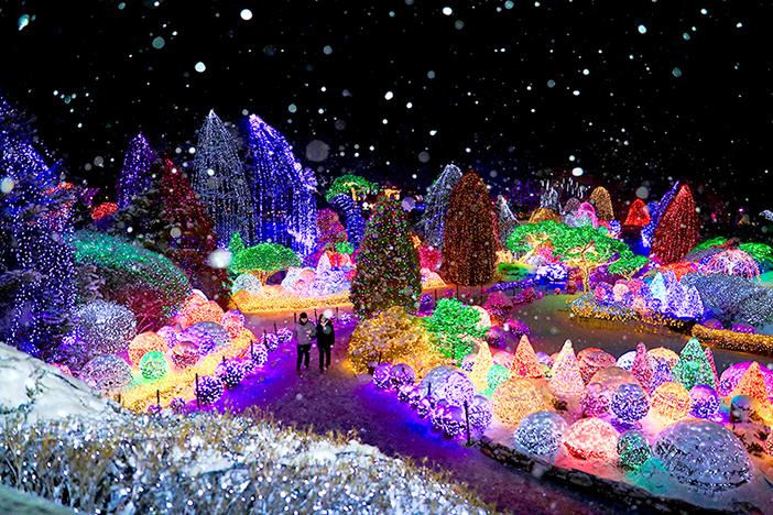 Lichterfest im Arboretum Achim Goyo (Quelle: The Garden of Morning Calm)