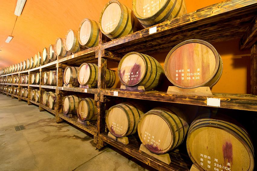 Túnel de reserva del vino