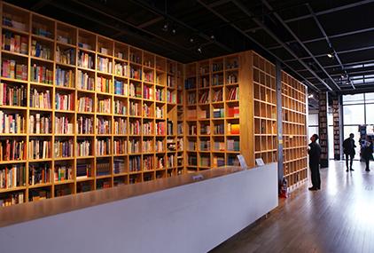 Biblioteca de la Ciudad Literaria de Paju