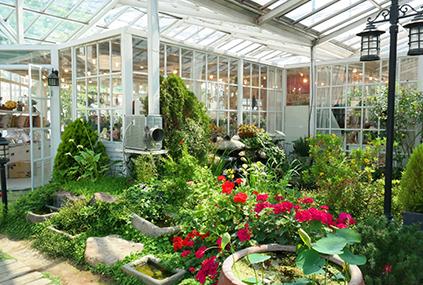Jardín del cristal