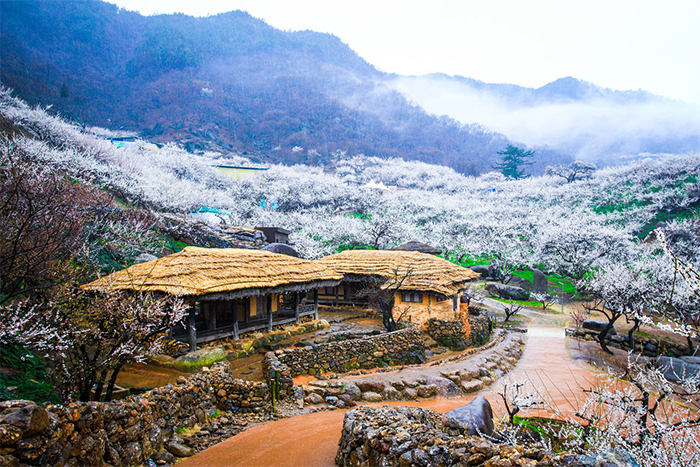 img src: visitkorea.or